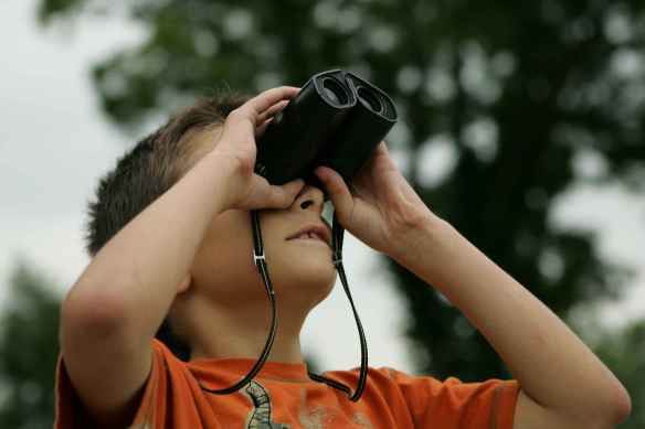 Boy_watching_with_binoculars by USFW - public domain