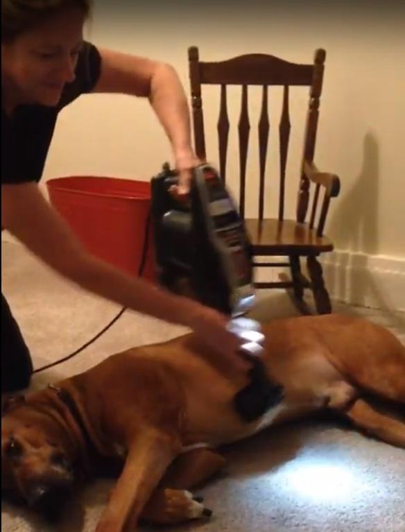Kathy Vacuuming Kruiser