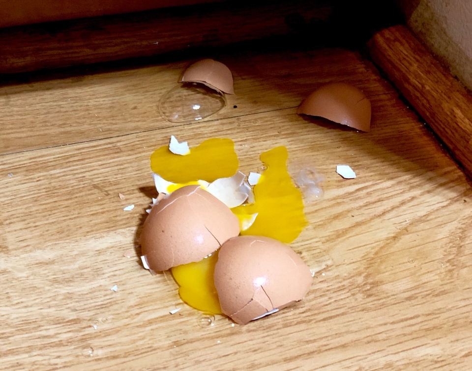 Broken Egg via garden beth -- Flickr Creative Commons